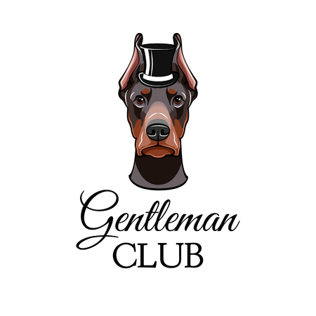 Doberman Pinscher dog with top hat. Vector illustrated portrait of dog on white background. Gentleman club.