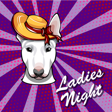 Bull terrier face wearing in Widewide-brimmed hat. Dog head. vector illustration. Illustration