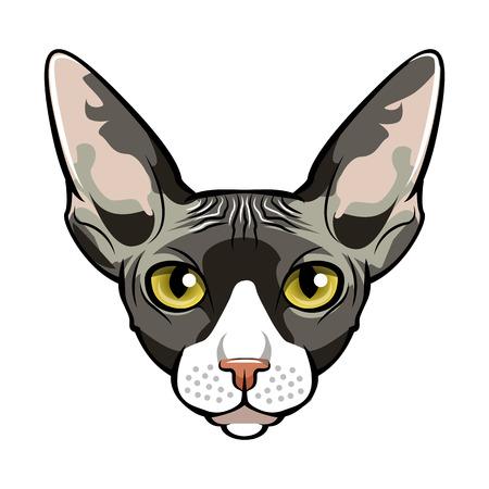 Sphinx, Cat face cartoon flat icon design.