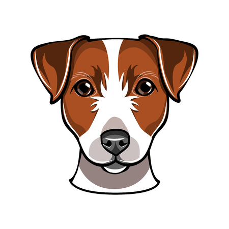 A Jack Russell dog Vector illustration isolated on white background.