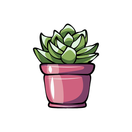 Succulent potted plant flat in cartoon illustration on white background. Vettoriali