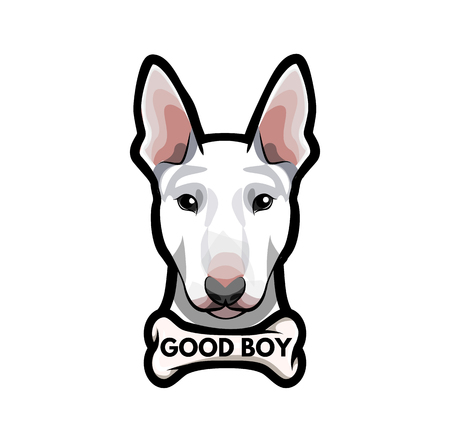 Puppy Bull Terrier with bone. Good boy lettering  Vector illustration isolated on white background. Illustration