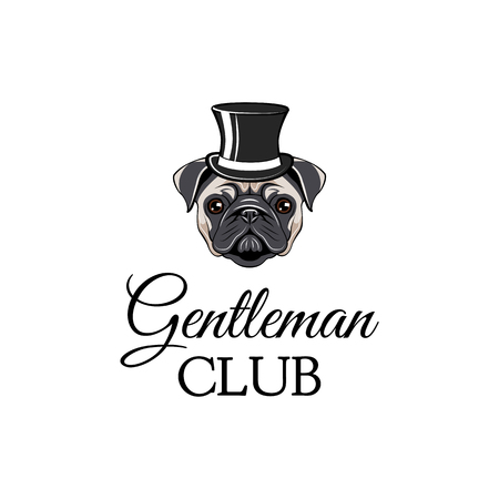 Pug dog wearing in top hat. Gentleman club. Vector illustration isolated on white background.