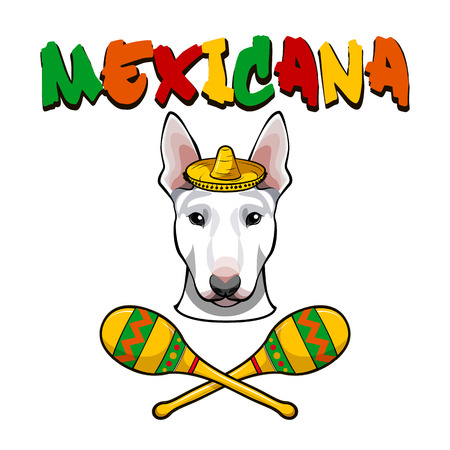 Vector image of an dog wearing sombrero with maracas. Vector illustration.