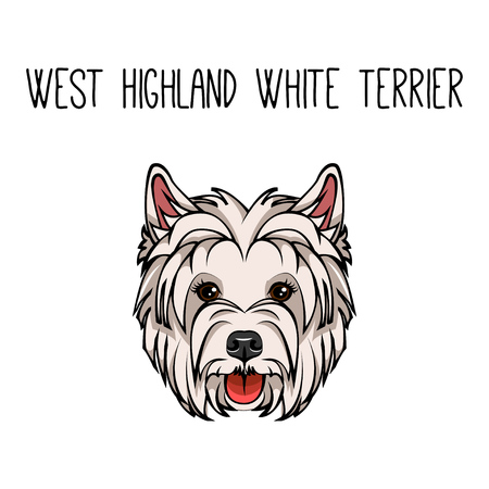 Vector dog West Highland White Terrier face icon flat design. Vector illustration isolated on white background.