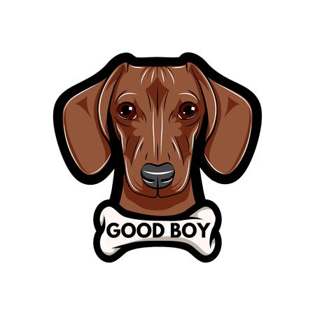 Portrait of Dachshund Dog with bone. Good boy text. Vector Illustrated isolated on white background.