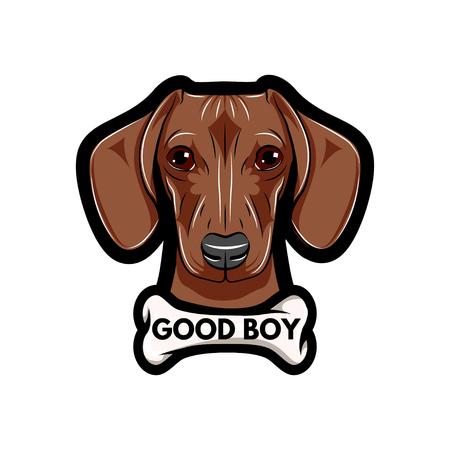 Portret van Teckelhond met been. Good boy-tekst. Vector geïllustreerd geïsoleerd op een witte achtergrond.