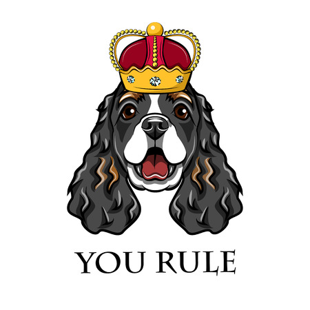 English cocker spaniel wearing in crown. King dog. Vector illustration. You rule lettering.