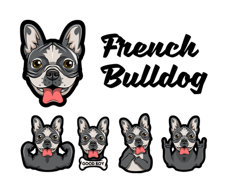 French bulldog with different gestures. Dog with muscles, bone, middle finger, horns and rock gesture. Vector illustration. Иллюстрация