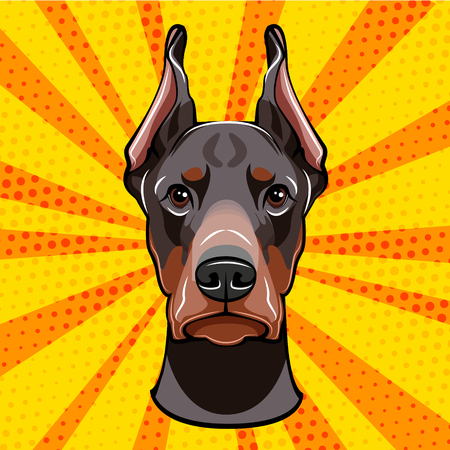 Doberman image. Vector illustration isolated on colorful background.