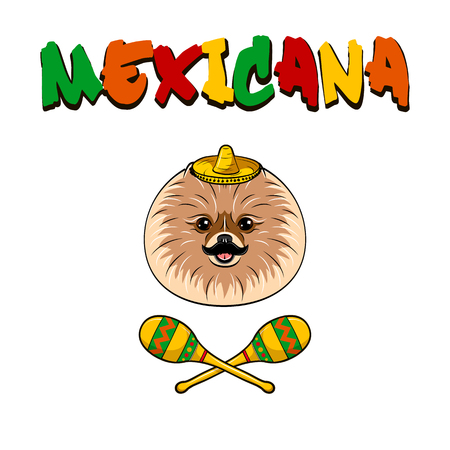 Mexican Spitz dog with mustache, sombrero and maracas. Vector illustration isolated on white background. Mexicana text. Illustration