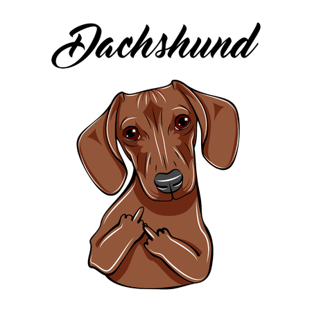 Dachshund middle finger gesture. Dog with gestures. Vector illustration. Dachshund lettering. Ilustracja