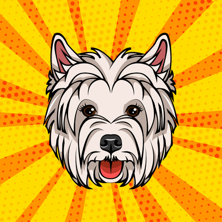 West Highland Terrier head. Dog portrait. Vector illustration isolated on colorful background.