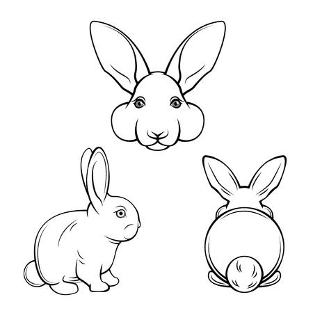 Bunny set. Rabbits, hares. Muzzle bunnies. Banny s back. Easter design element. Easter symbol Vector illustration