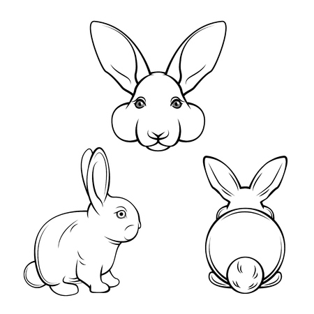 Bunny set. Rabbits, hares. Muzzle bunnies. Banny s back. Easter design element. Easter symbol Vector illustration