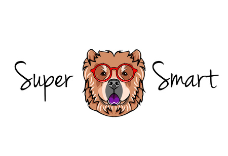 Chow chow dog geek. Dog in Smart glasses. Super smart inscription. Vector illustration. Иллюстрация