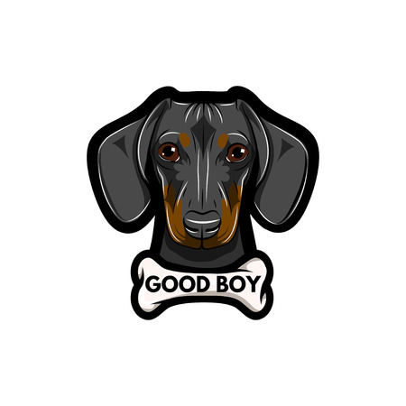 Dachshund dog with bone with good boy inscription  isolated on white background. Imagens - 97988961