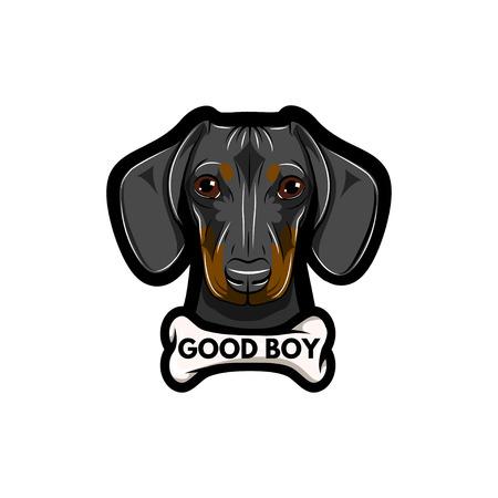 Dachshund dog with bone with good boy inscription  isolated on white background.
