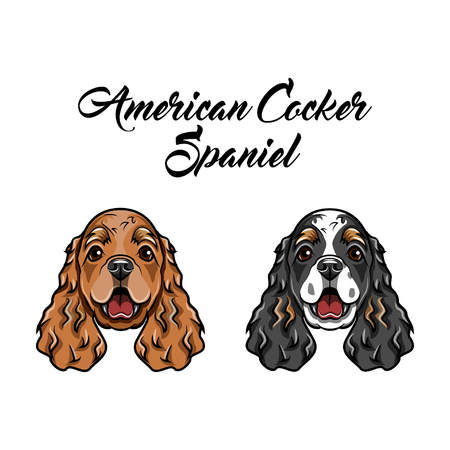 American spaniels icon illustration. Ilustrace