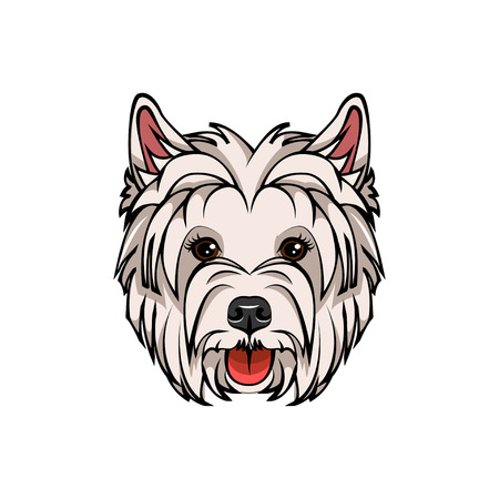 West Highland White Terrier portrait illustration isolated on white background.