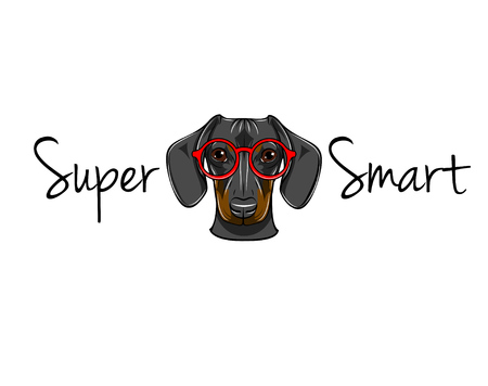 Dachshund geek. Dog in smart glasses. Super smart inscription. Vector illustration. Red eyeglasses.