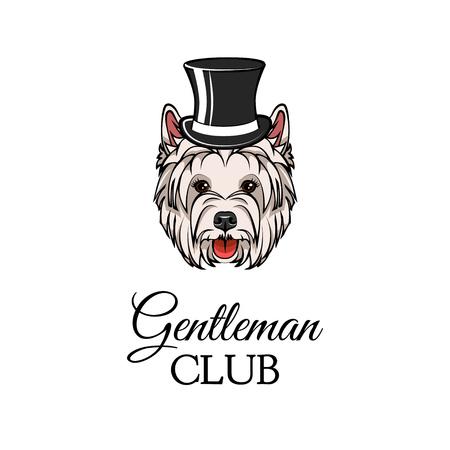 West Highland White Terrier in top hat. Dog Gentleman. Vector illustration. Gentleman club inscription. 矢量图像
