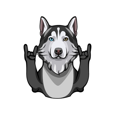 Siberian Husky with rock gesture, horns. Vector illustration isolated on white background. Illustration