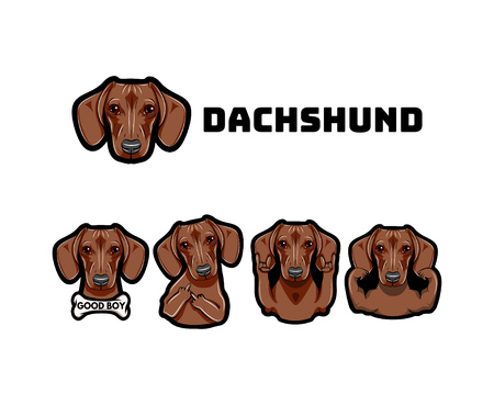 Dachshund with gestures. Dog. Middle finger, muscles, bone, rock gesture, horns Vector Dachshund muzzle face Dog breed