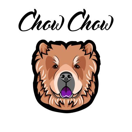 Chow Chow muzzle. Dog Portrait. Dog breed. Face, head Vector Illustration Illustration