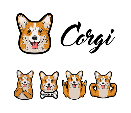 Corgi with middle finger, bone, horns, rock gesture, muscles vector dog with gestures and muzzle face head.