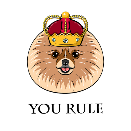 Spitz dog in crown vector illustration.