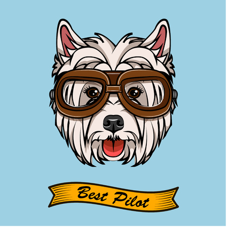 Dog West Highland White Terrier in pilot glasses.