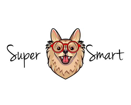 Chihuahua geek. Dog in smart red glasses. Illustration