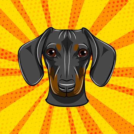 Dachshund face. Dog portrait muzzle head. Dog breed. Vector illustration Banque d'images - 98205361