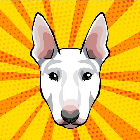Bull terrier head, face, muzzle. Dog breed. Vector illustration isolated on colorful background. Иллюстрация