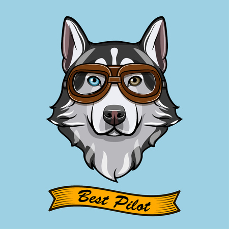 Siberian husky dog pilot. Aviators glasses. Pilot glasses. Vector illustration. Best pilot inscription. 일러스트