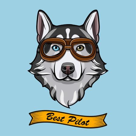 Siberian husky dog pilot. Aviators glasses. Pilot glasses. Vector illustration. Best pilot inscription. Stock Illustratie