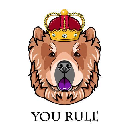 Chow Chow king. Crown. Dog Portrait. Vector illustration. You rule inscription