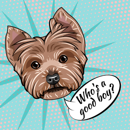 Dog Yorkshire terrier portrait. Who is good boy inscription. Vector illustration isolated on colorful background. Illustration