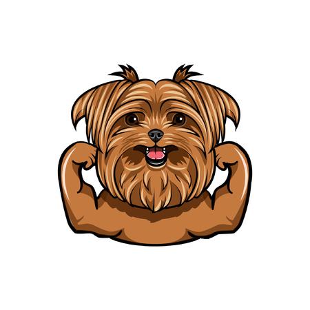 Griffon dog Muscle dog athlete. Sportsman dog portrait Dog breed Vector illustration Векторная Иллюстрация