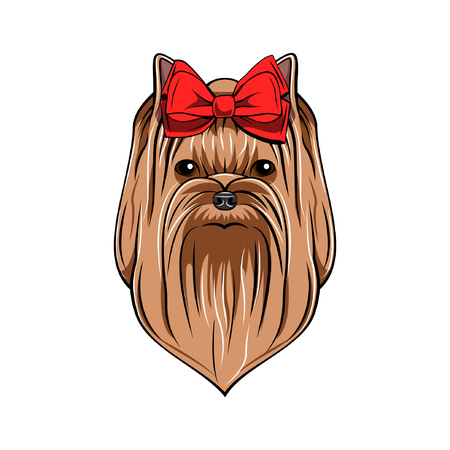 Yorkshire terrier portrait. Dog head Vector illustration