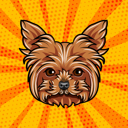 Griffon dog portrait. Dog breed. Dog face head. Vector illustration