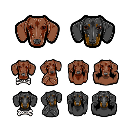 Dachshund dos. Bone, Rock gesture, Muscles, Middle finder. Dog face, head. Dog breed set. Vector Dachshund with different gestures Stock Illustratie
