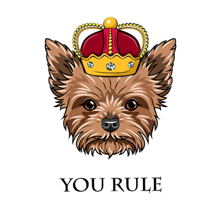 Griffon dog king with crown. Dog portrait with Vector You rule text. Vectores