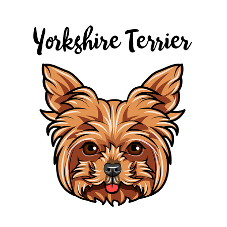 Yorkshire terrier muzzle. Dog face. Dog breed. Cute pet. Vector illustration