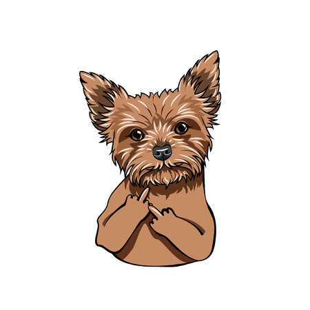 Yorkshire Terrier dog. Middle finger gesture. Dog portrait. Vector illustration