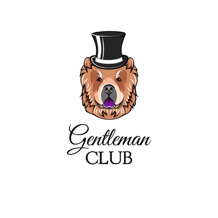 Chow chow gentleman. Top hat. Accessorry. Dog portrait Vector illustration