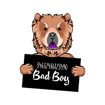 Chow Chow prisoner. Arrest photo. Criminal dog. Mugshot photo. Police placard, Police mugshot, lineup. Arrest. Photo offender Vector illustration Ilustrace