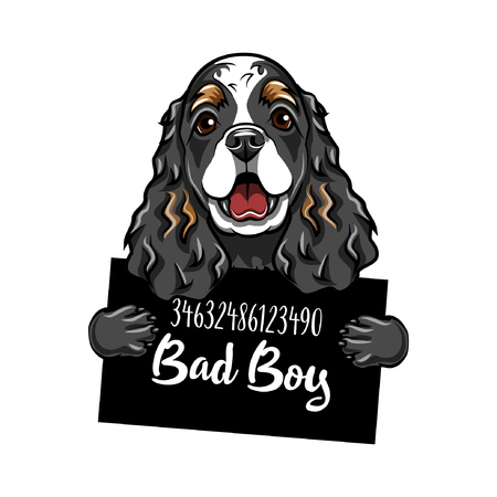 A Cocker Spaniel criminal.Illustration of a Dog prisoner with Police placard, Police mugshot, lineup. Arrest photo. Mugshot photo Vector illustration