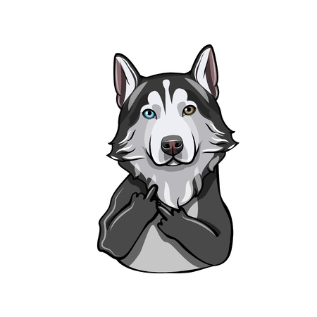 Siberian Husky Vector illustration